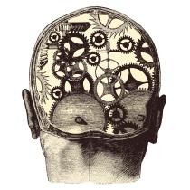 bvc-programme-cerveau-petit